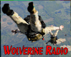 I decoded this Wolverine Radio SSTV QSL on the SSTV iOS App